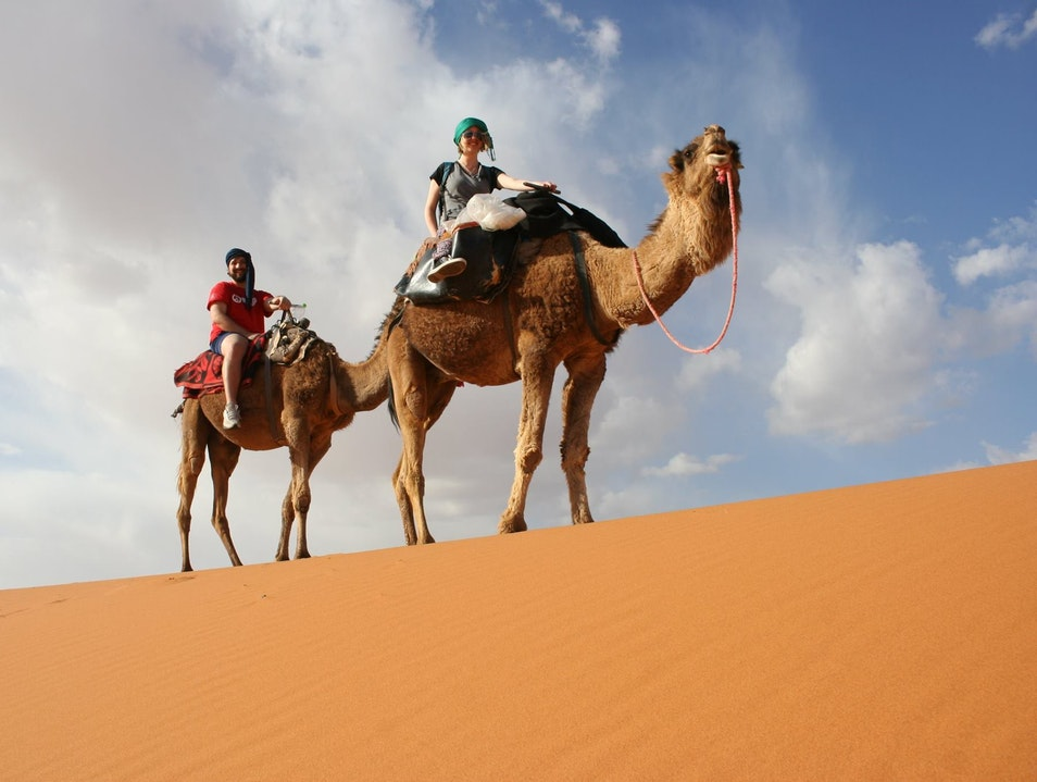 Riding camels in the Sahara Desert. Ouled Khellouf  Morocco