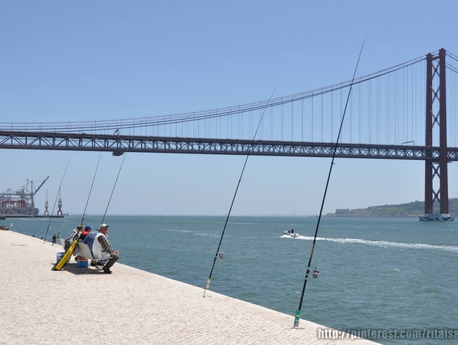 Along the Tagus River