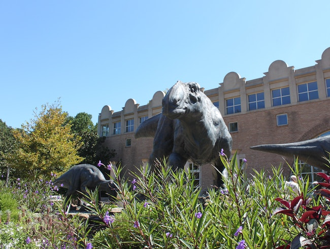 Dinosaurs and IMAX at Fernbank Museum