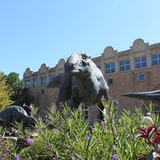 Fernbank Museum of Natural History IMAX
