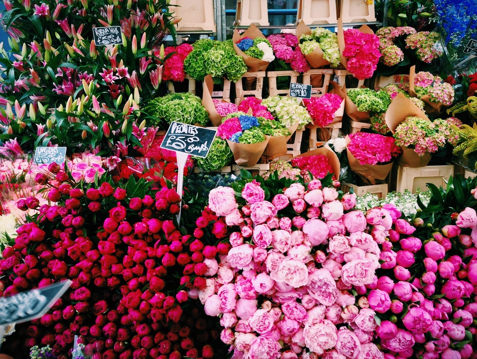 Columbia Road Flower Market in London  London  United Kingdom