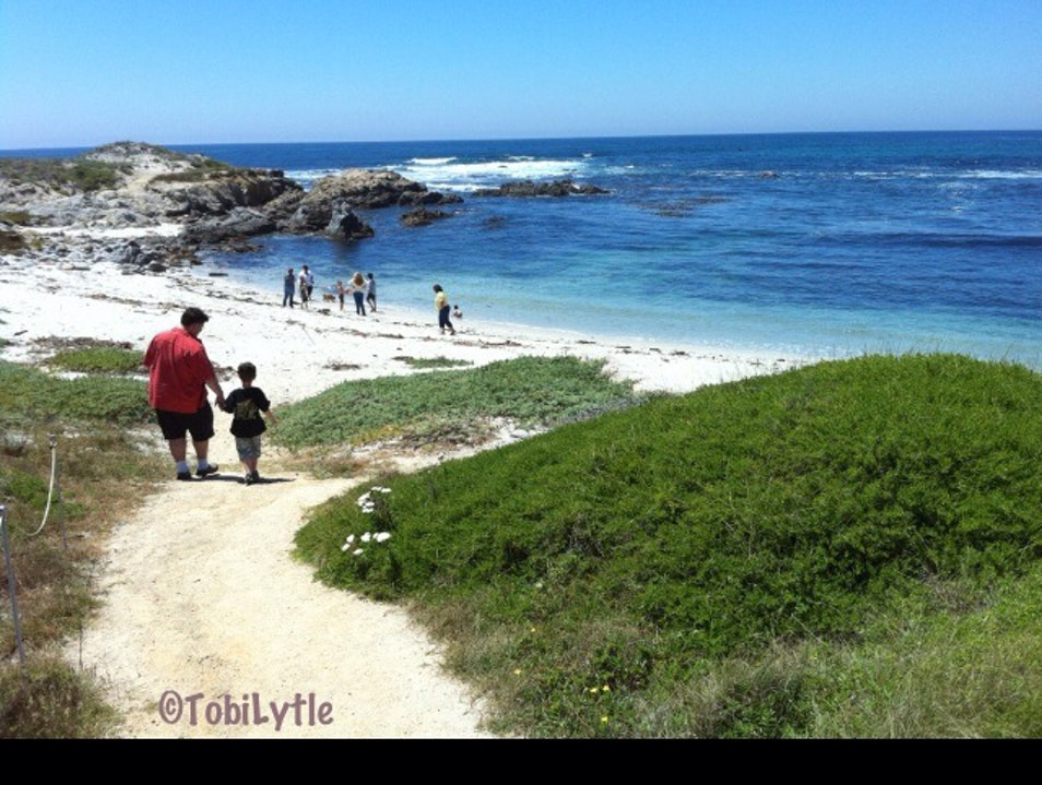 Ben and Edison, meet the white sand of Pebble Beach, CA Del Monte Forest California United States
