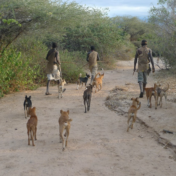 Hunting with the Hadza people