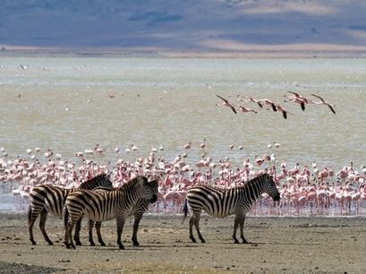 Lake Magadi Kajiado  Kenya