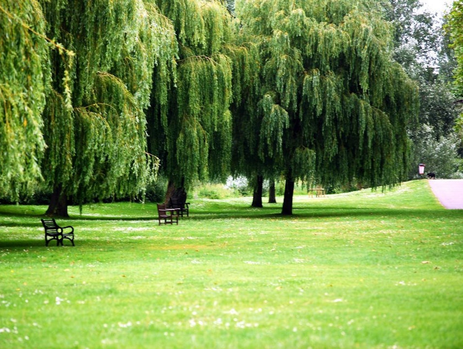 Unwind at the Royal Parks London  United Kingdom