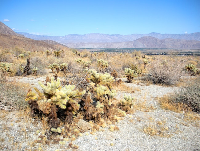 Hiking in beautiful Anza-Borrego State Park