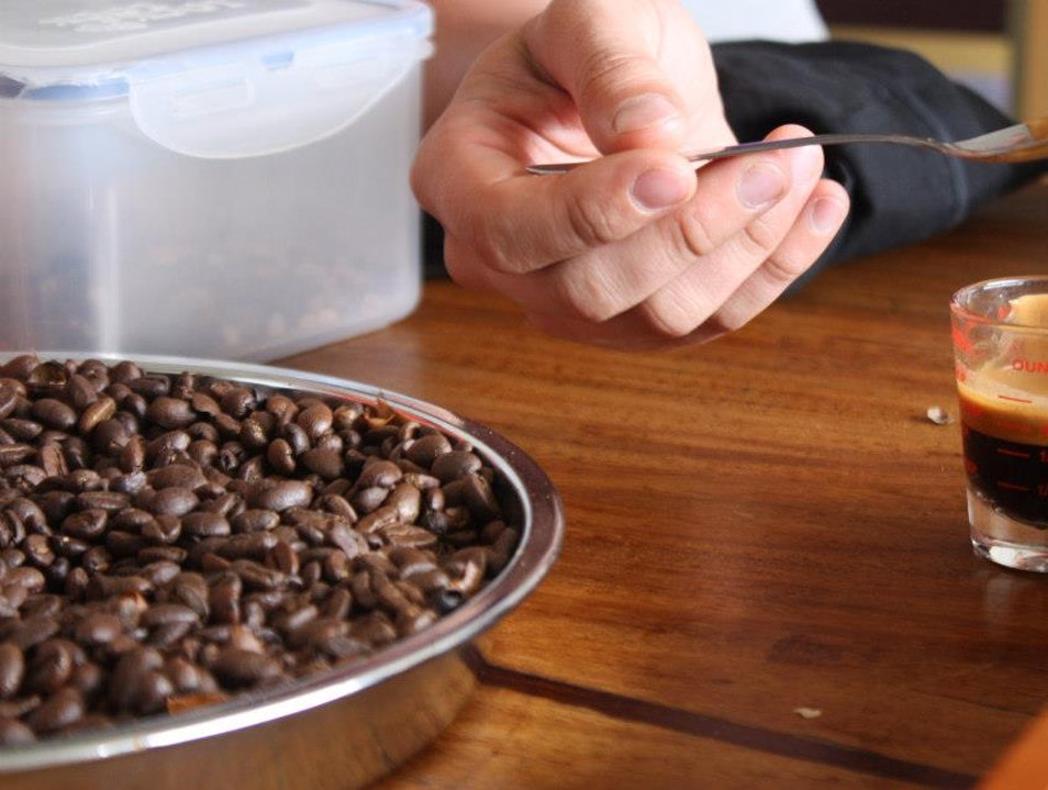 Journey to the Heart of Colombia's Coffee Triangle  Las Pavas  Colombia