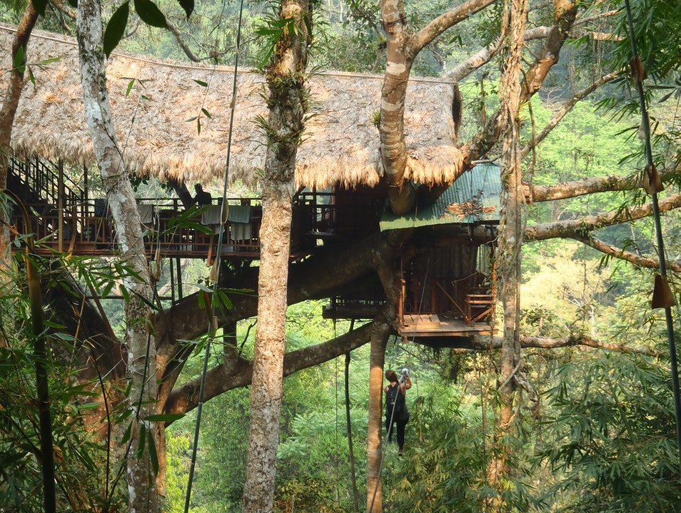 Ziplining to Support Gibbon Preservation in Laos Luang Namtha  Laos