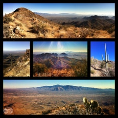 Wasson Peak, highest point in the Tucson Mountains