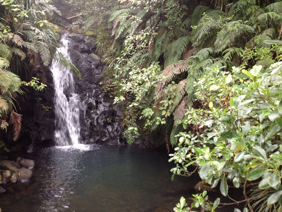 Secret Falls Auckland  New Zealand