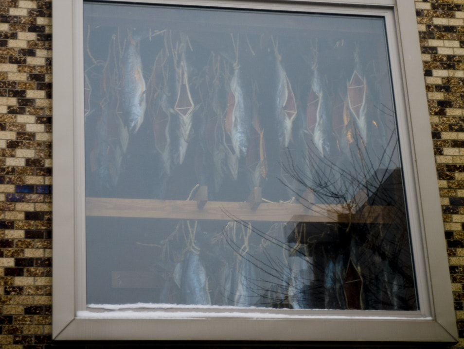 Window of Fishes