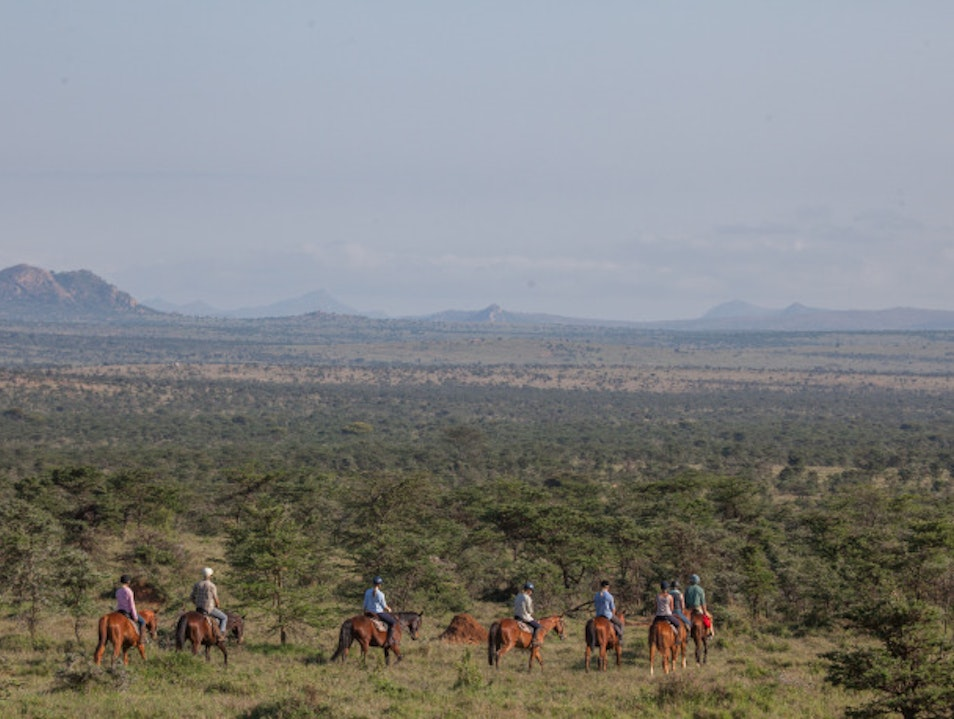 Horse ride your way through the bush for spectacular star gazing Timau  Kenya