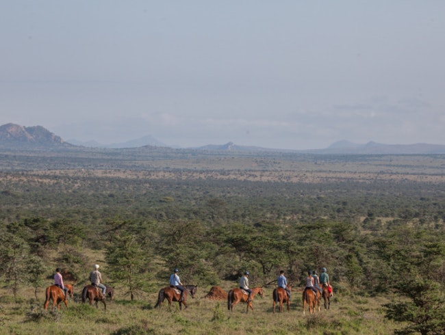Horse ride your way through the bush for spectacular star gazing
