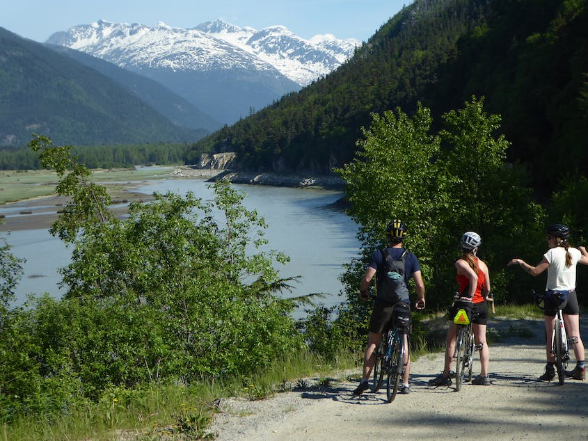 Travelers can get really up close and personal with Alaska's landscapes on an REI Adventures cycling journey.