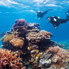 Ribbon Reefs
