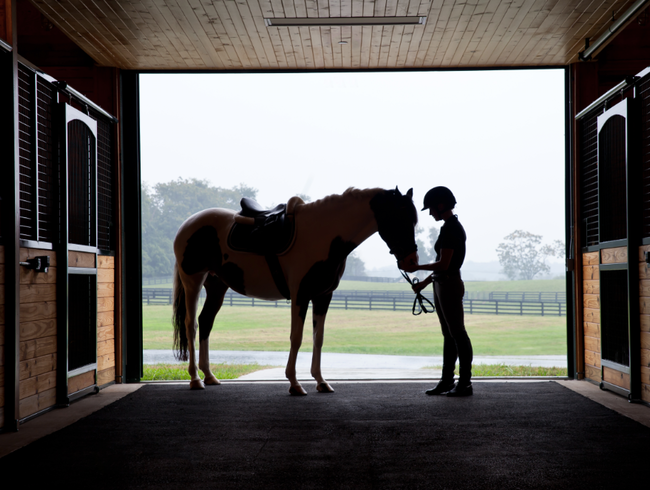 A Hotel for Horse Lovers