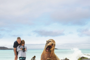 Meet the Local Wildlife of GALÁPAGOS