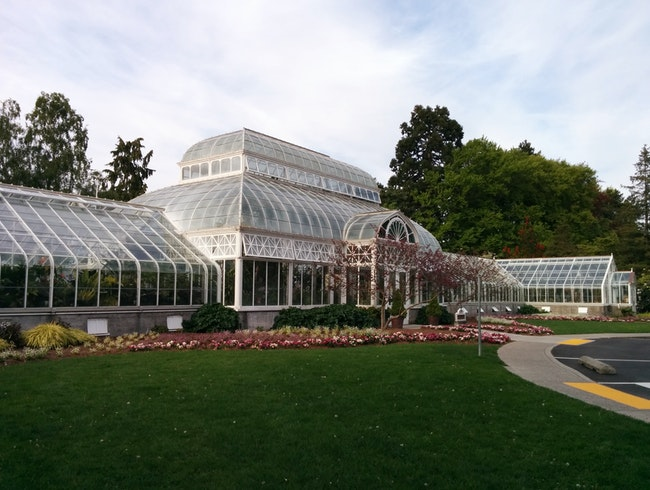 Walk Among the Flowers at Volunteer Park