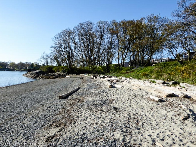 Exploring the beaches in Oak Bay