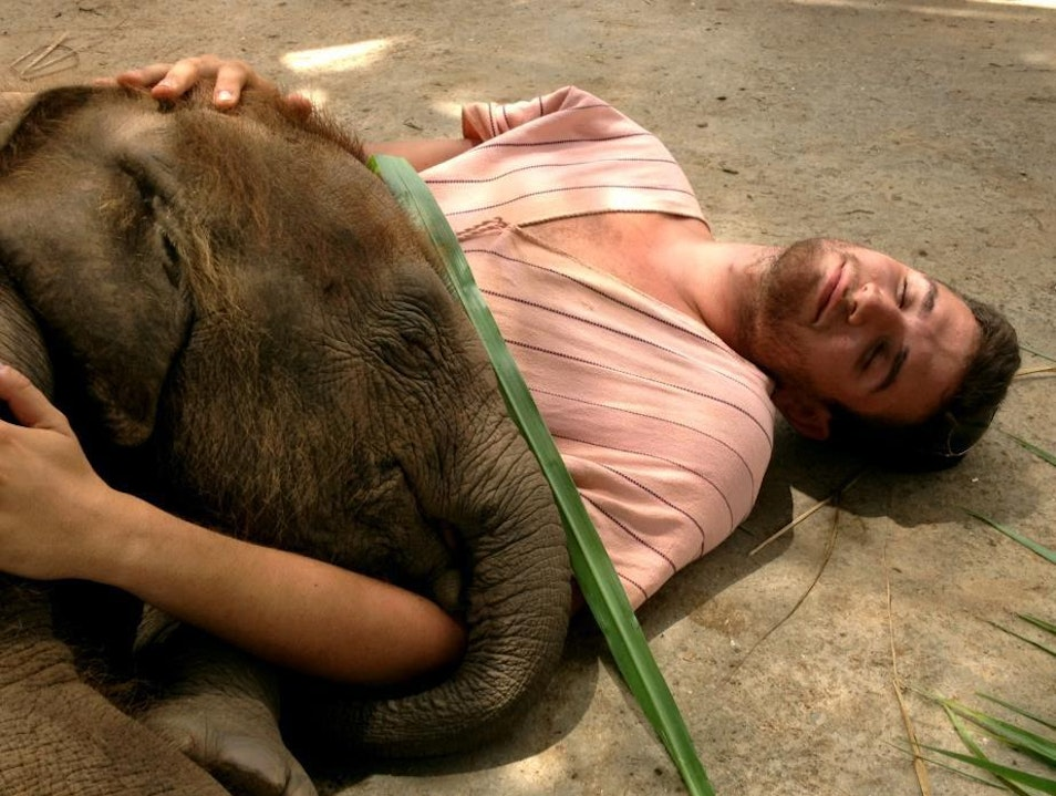 Babysitting an Elephant Mae Win  Thailand