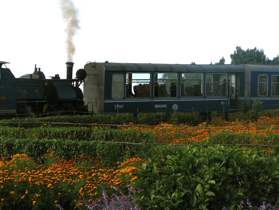 The Real Darjeeling Limited Darjeeling  India