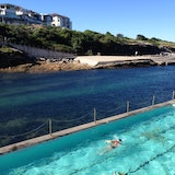 The Geoff James Pool (Clovelly Ocean Pool)