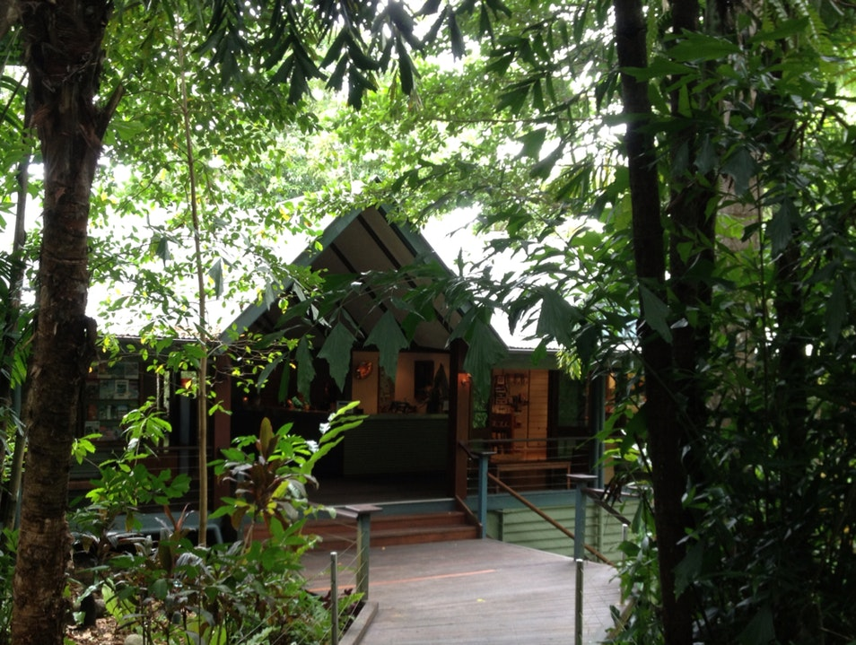 Lodge in the Daintree Finlayvale  Australia