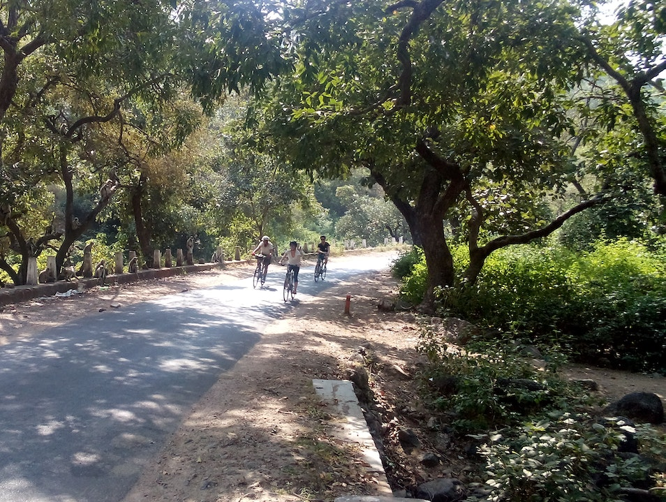 Cycling holidays through Rajasthan, India Udaipur  India