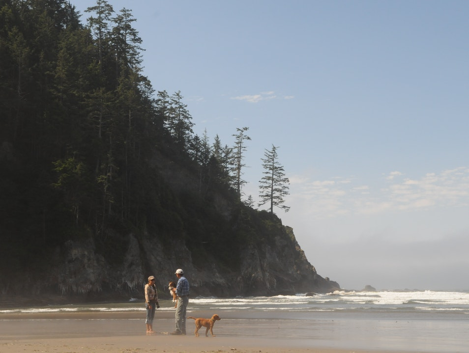 Hidden Gem Along the Oregon Coast Nehalem Oregon United States