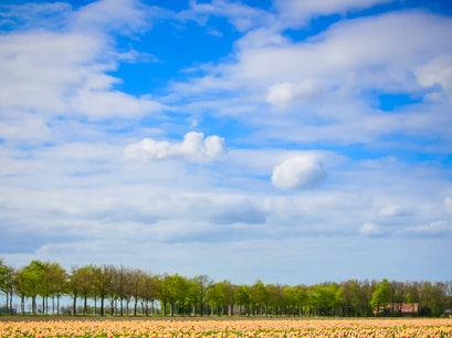Flevoland Swifterbant  The Netherlands