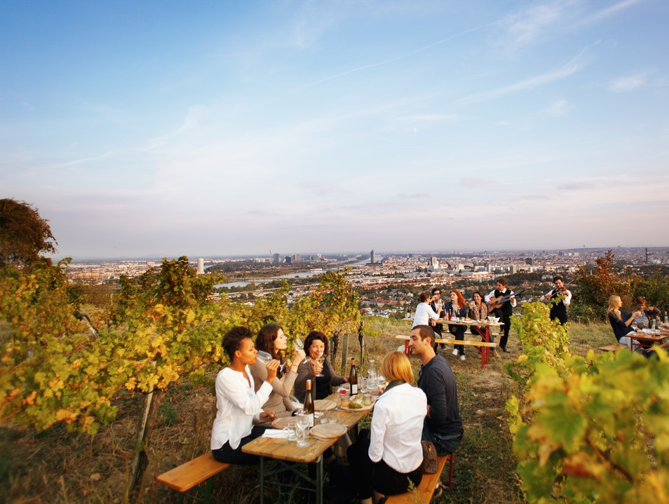 An evening of wine at Heuriger Wieninger