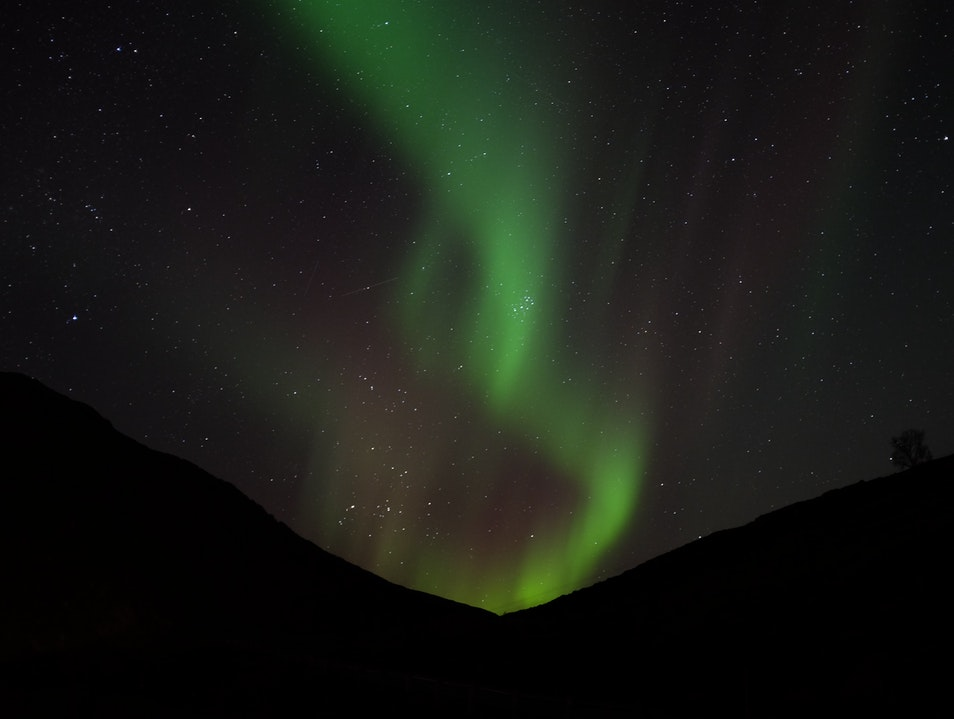 chase the northern lights with green fox guiding