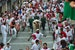 Fiesta de San Fermin: The Running of the Bulls