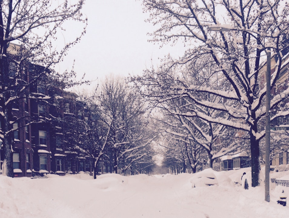 Snowmageddan '15 Boston Massachusetts United States