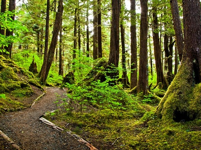 Nature Walk Ketchikan Alaska United States