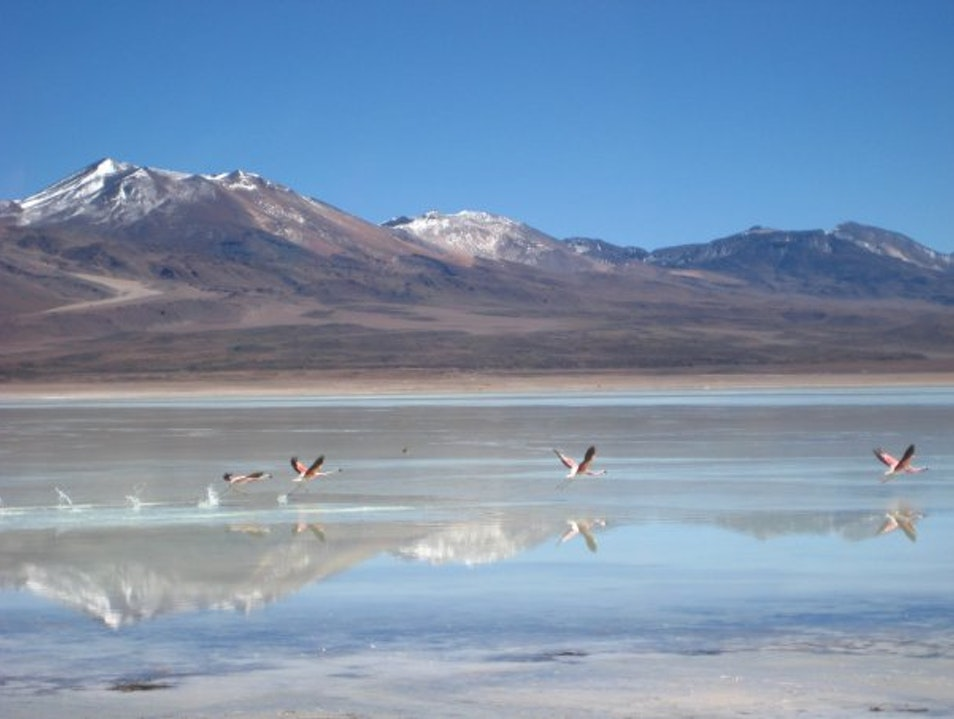 Amazed by the Laguna Verde