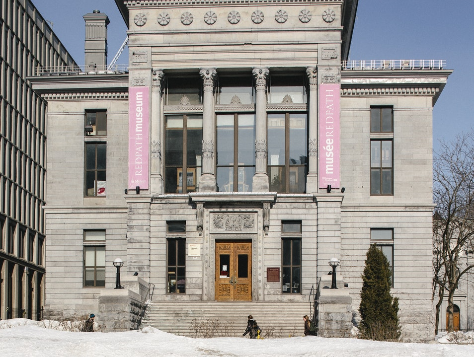 Browse a Quirky Collection of Relics at the Redpath Museum Montreal  Canada