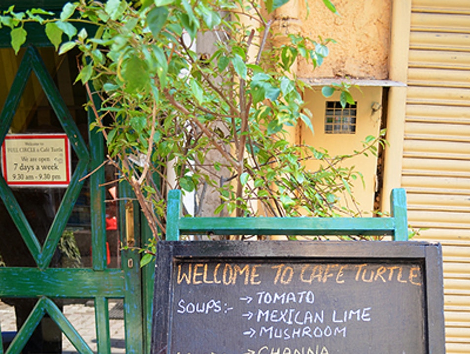 Slow Down at Cafe Turtle New Delhi  India