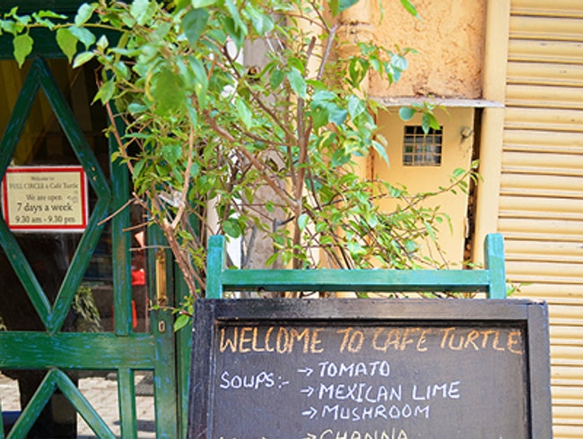 Slow Down at Cafe Turtle