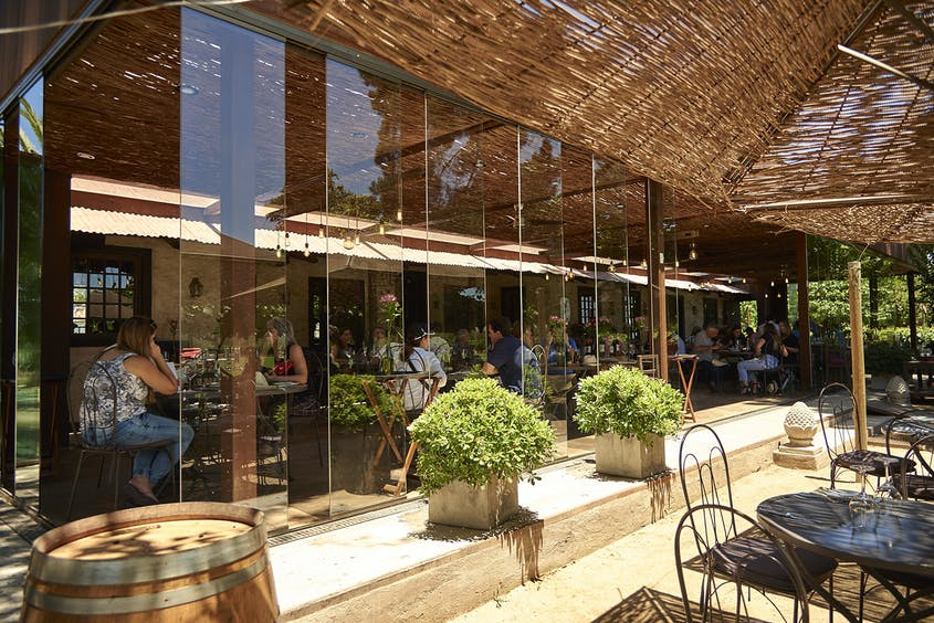 Carnivores will delight in the meat-centric menu at Rayuela Wine and Grill, at the Viña Viu Manent winery.