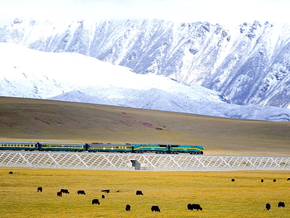 Qinghai-Tibet Railway - the world's highest railway Haixi Mengguzuzangzuzizhizhou  China
