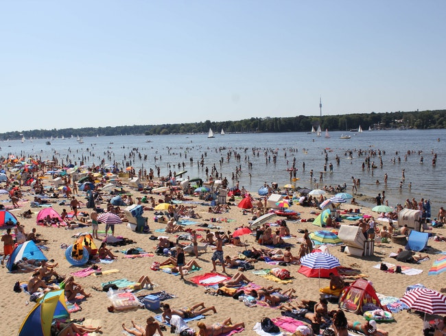 Take a Dip in the Wannsee