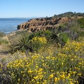 Torrey Pines State Nature Reserve