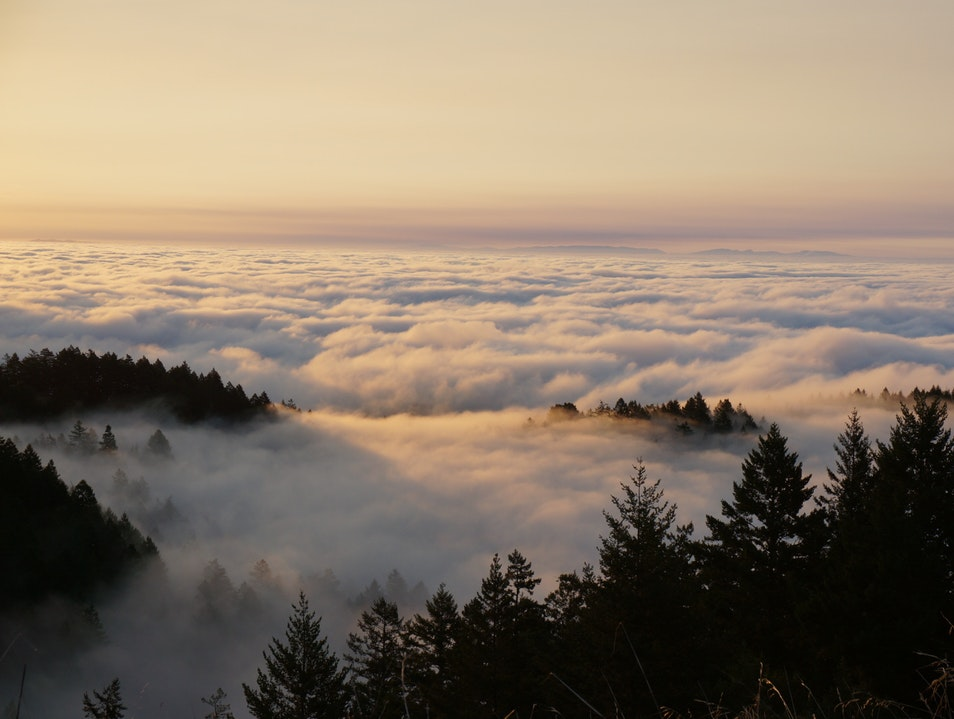 Above the Clouds on Mt. Tam Santa Cruz California United States
