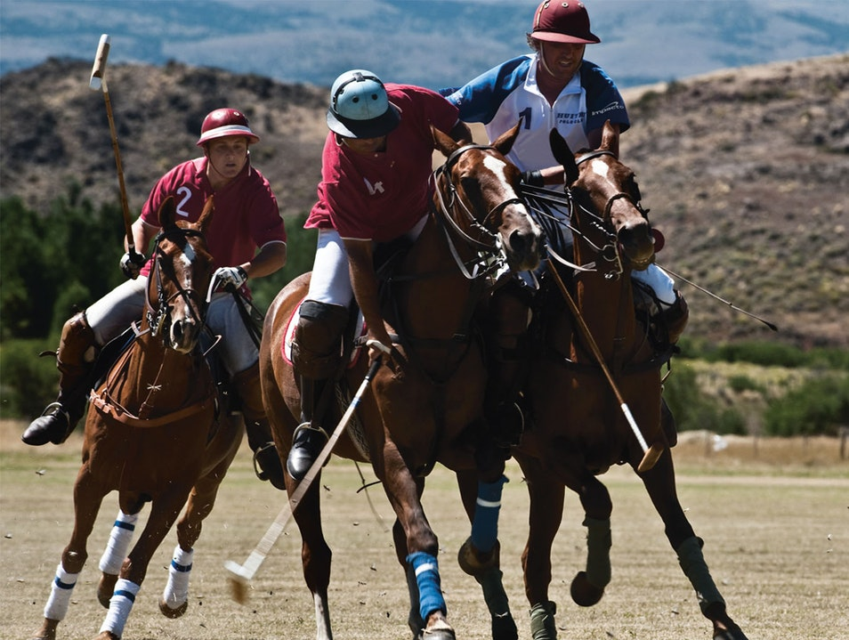 Play Polo? El Desafino Offers Superb Polo and Golf Lácar Department  Argentina