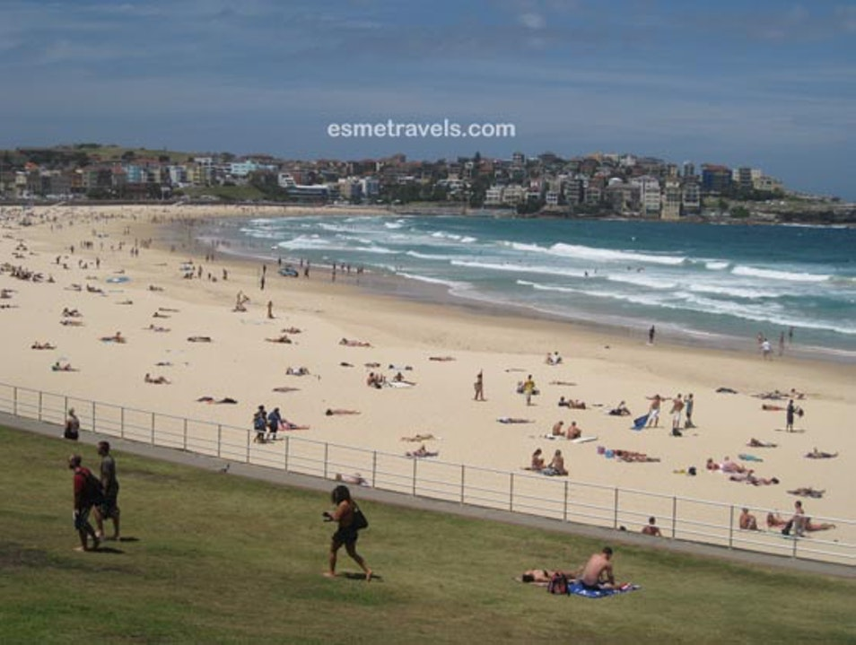 Bondi Beach to Coogee Walk Bondi Beach  Australia