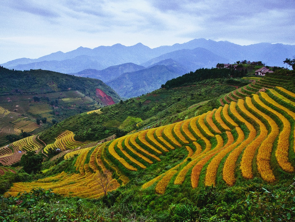 Climb the Terraces, Thanh Kim Commune, Sa Pa District, Lao Cai province, Vietnam. Thanh Kim  Vietnam