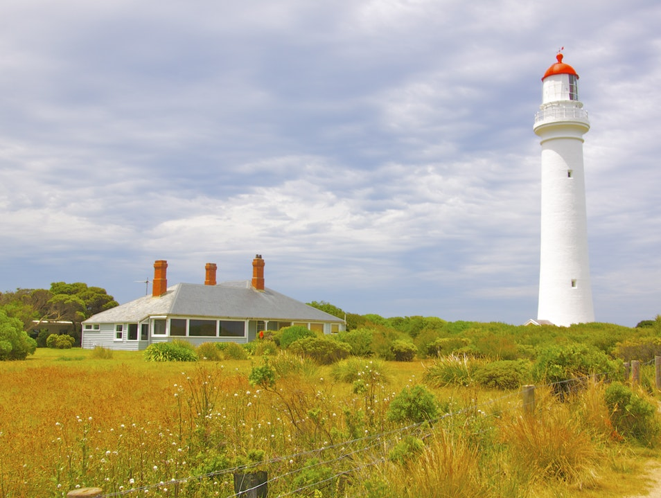 Visiting the 'White Queen', Split Point Lighthouse Aireys Inlet  Australia