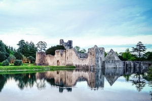 Ruins of Desmond Castle, Adare