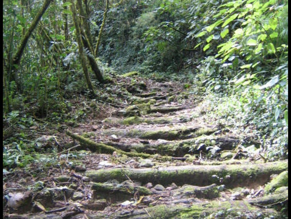 Hiking the Quetzal Trail in La Amistad Park